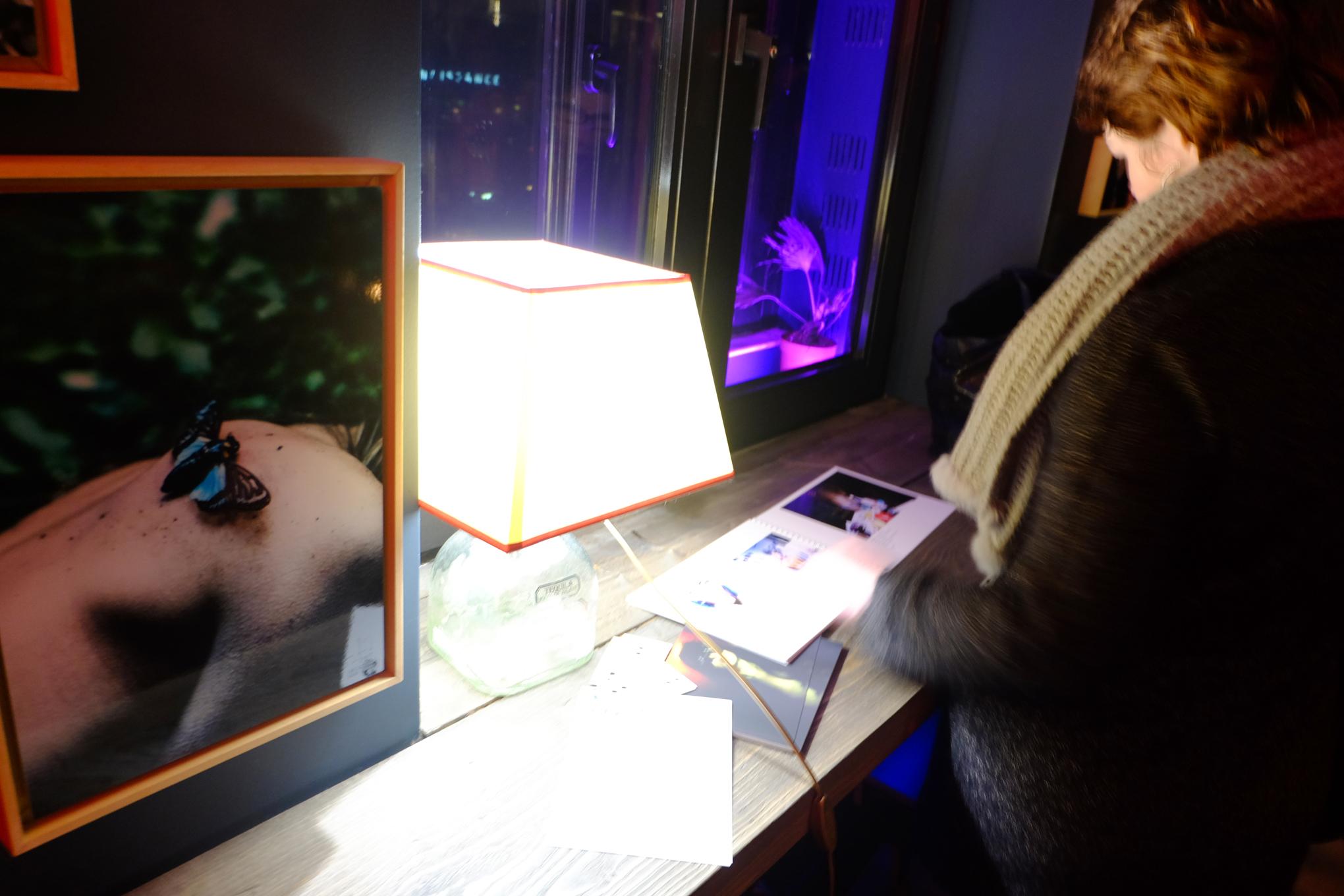 """""""S'il Vous Plaît"""", une exposition de Plume Heters Tannenbaum à la Maison Sage, février 2017. Photo : MD."""